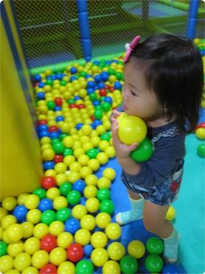 qIMG_6678-20121104