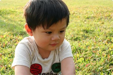 qIMG_2490-20121110