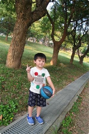 qIMG_2583-20121110