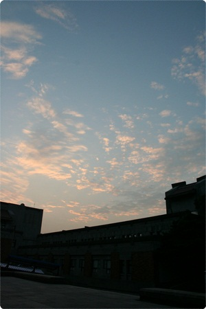 qIMG_2657-20121110