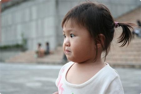 qIMG_2673-20121110