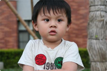 qIMG_2682-20121110