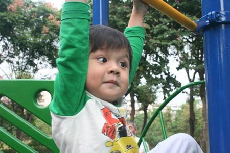 qIMG_2351-20121206