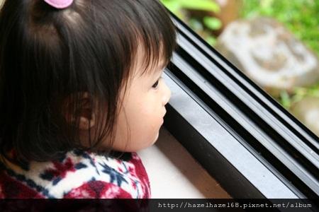 qIMG_3610-20121208