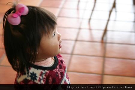qIMG_3410-20121208