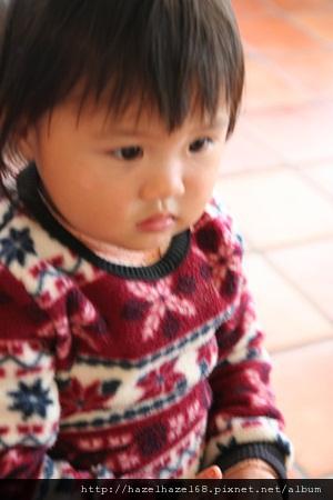 qIMG_3442-20121208
