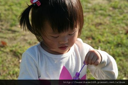 qIMG_4166-20121220