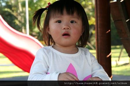qIMG_4200-20121220