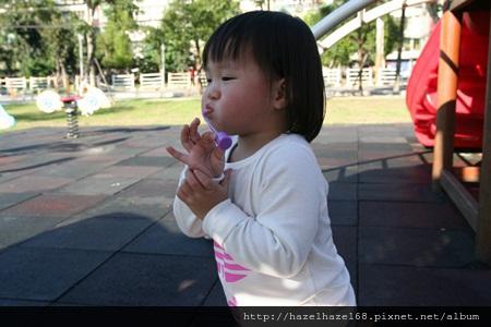 qIMG_4209-20121220