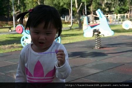 qIMG_4211-20121220