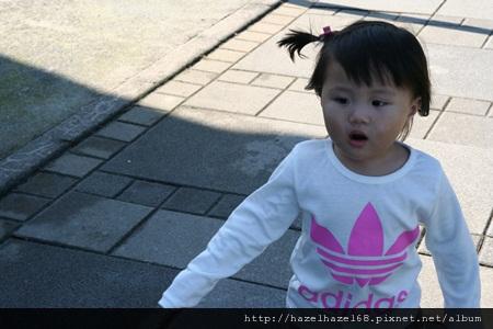 qIMG_4032-20121220