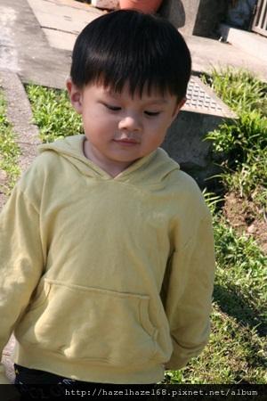 qIMG_4026-20121220