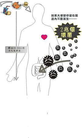人體簡圖0709