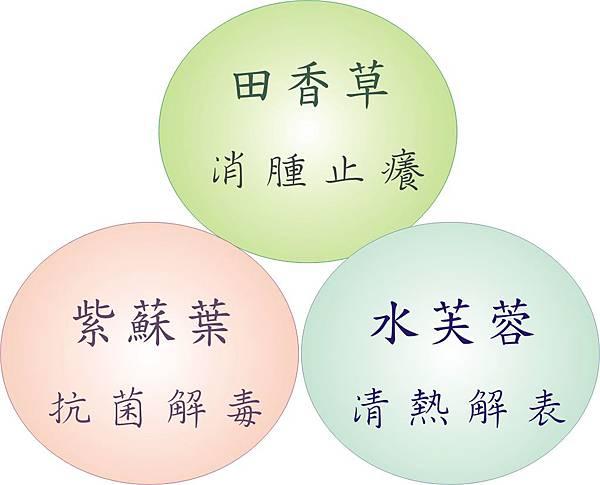三種香草.jpg