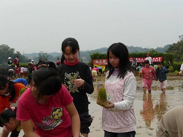 峨小插秧2006