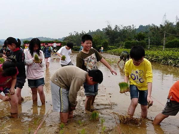 峨小插秧2007