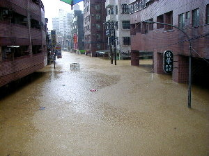 忠孝東路大淹水-縮小
