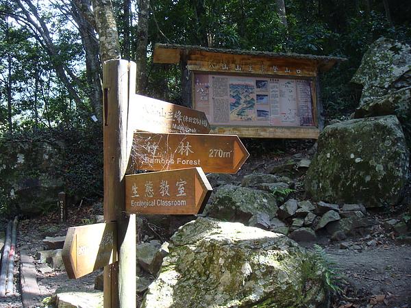 八仙山主峰登山口.JPG