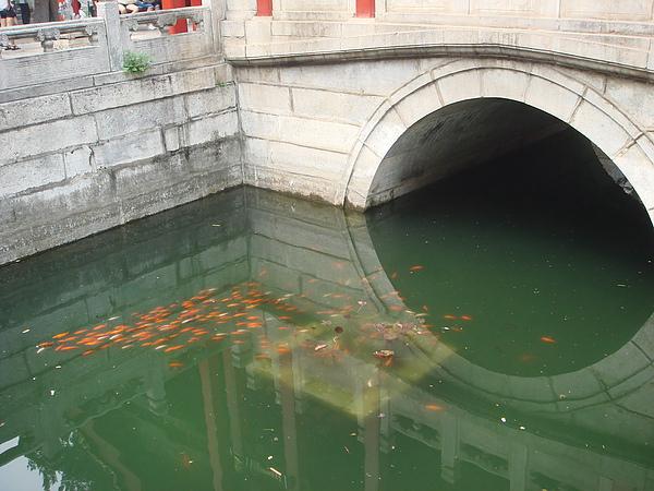 澄瑞亭下的水池.JPG