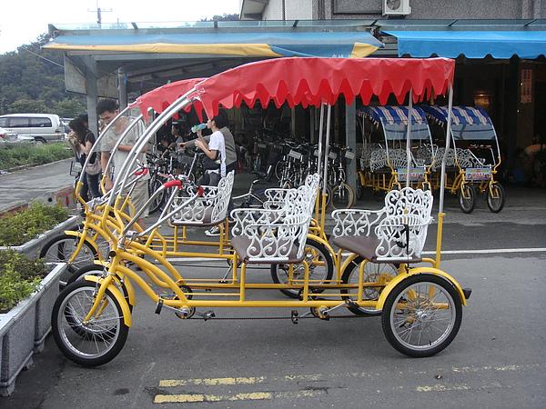 遊湖自行車.JPG