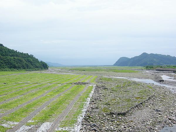 看不到龜山島.JPG