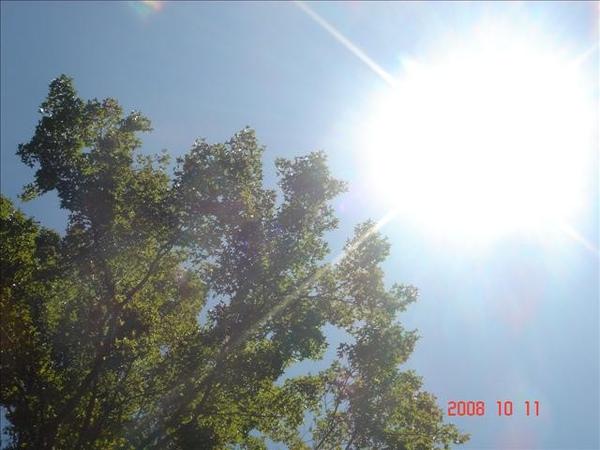 今天的天空很藍
