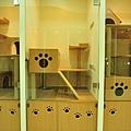 2F貓客房