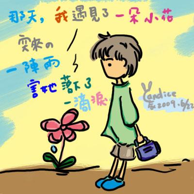 20090622小花拷貝.jpg
