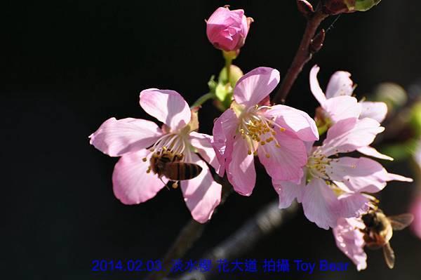 2014-02-03 10_Fotor - 17.jpg