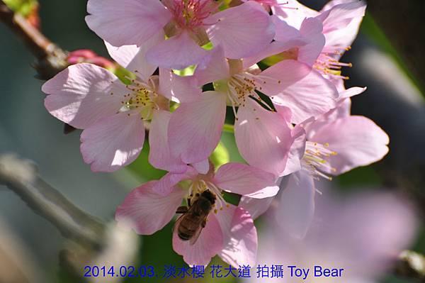2014-02-03 10_Fotor - 20.jpg