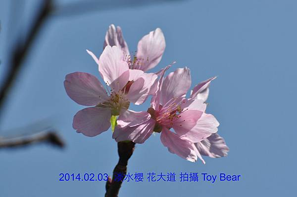 2014-02-03 10_Fotor - 22.jpg