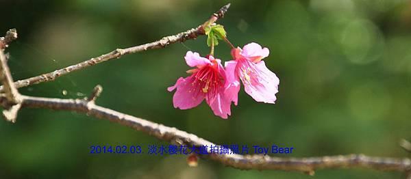 2014-02-03 10_Fotor -07.jpg