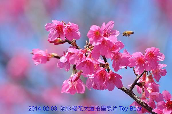 2014-02-03 10_Fotor -10.jpg