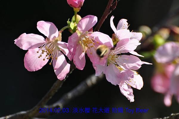 2014-02-03 10_Fotor -19.jpg