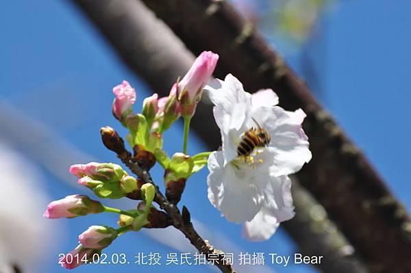 2014-02-03 11_Fotor - 29.jpg