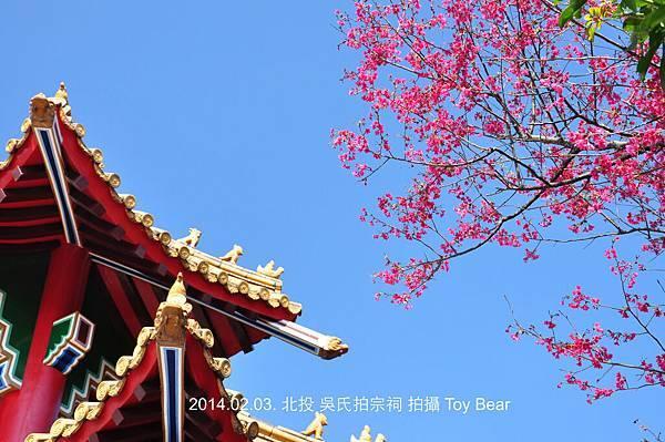2014-02-03 11_Fotor - 30.jpg