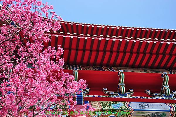 2014-02-03 11_Fotor - 36.jpg