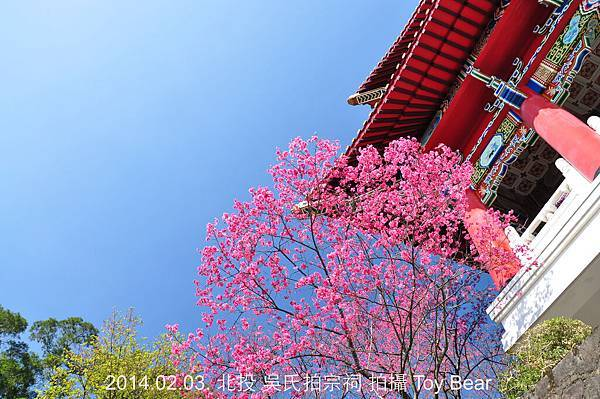 2014-02-03 11_Fotor - 37.jpg