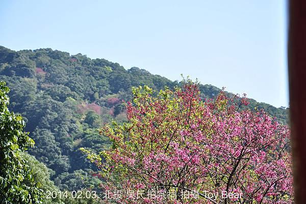 2014-02-03 11_Fotor - 41.jpg