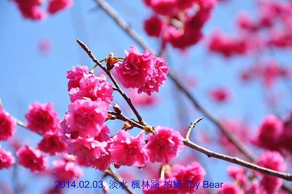 2014-02-03 12_Fotor - 47.jpg