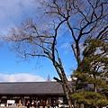 38_Japan001.jpg