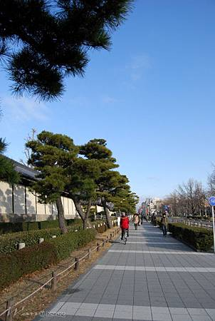 44_Japan005.jpg