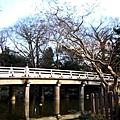 28_Japan017.jpg