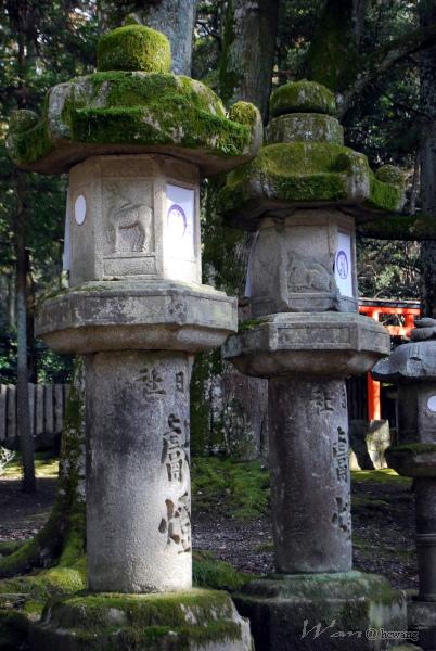 22_Japan020