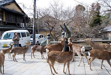 24_Japan011