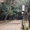 28_Japan019