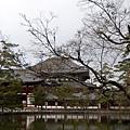 32_Japan018