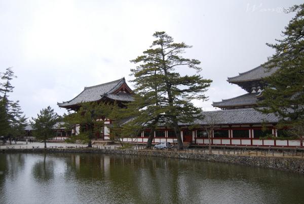 38_Japan017