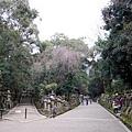 54_Japan025