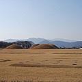 Busan-201455.jpg